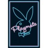 Playboyplakat - Blå/Rosa 61x91,5