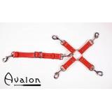 Avalon - Rødt Hog-tie-sett med 5 deler