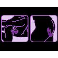 Adrien Lastic - Couple secrets - parvibrator med fjernkontroll